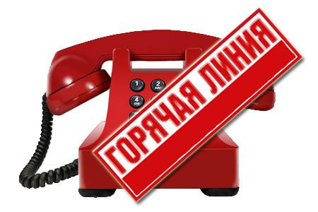 Номера телефонов горячей линии по проведению выпускных экзаменов, приема в гимназию